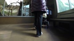 A mother walks son in stroller around the zoo Stock Footage