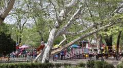 Timelapse in Cismigiu park Stock Footage