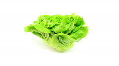 Lettuce rotates on white background Stock Footage