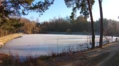 Flight over the frozen autumn pond Stock Footage