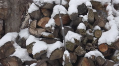 Pan left firewood storage winter season snowfall cold weather wood trunk piece Stock Footage