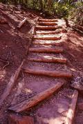 Timbered steps Stock Photos