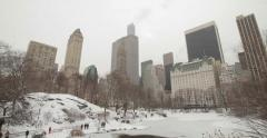 Central Park in New York City in winter snow Stock Footage