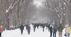 People walking in snow winter park in Central Park Stock Footage