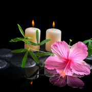 spa background of delicate pink hibiscus, green tendril passionflower, candle - stock photo