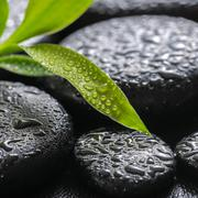 closeup beautiful spa background of green branch bamboo on zen basalt stones  - stock photo