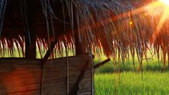 Little farm hut in rice field with sun light and flare Stock Footage