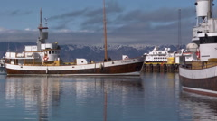 Iceland, Empty Whalewatching Boat Passes Slowly in Husavik Harbor Stock Footage