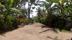 Jungle Road on Micronesian Island of Pohnpei Stock Footage