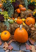 Autumn ornament with pumkins - stock photo