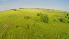 Large pasture near village at summer sunny day. Aerial view Stock Footage