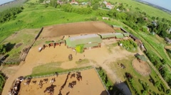 Ranch with horses near village at summer sunny day. Stock Footage