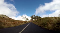 Driving mountain road to Pico Arieiro in Madeira with trees Stock Footage