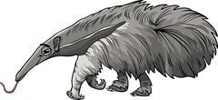 Stock Illustration of anteater animal cartoon illustration