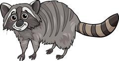 Stock Illustration of raccoon animal cartoon illustration