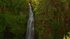 Waterfall in Mount Rainier National Park Stock Footage
