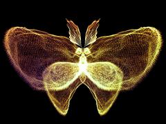 Butterfly Design - stock illustration