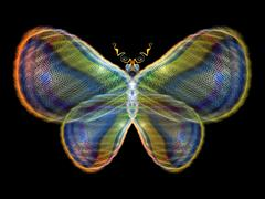Glow of Butterfly - stock illustration