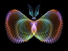 Elegance of Butterfly - stock illustration