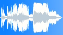 Placenta Stock Music