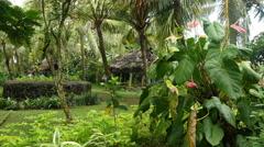 American Samoa village scene 4k Stock Footage