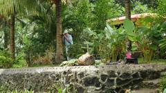American Samoa tourist photographing 4k Stock Footage