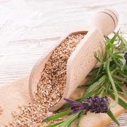Wheat groats - stock photo