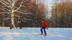 Cross-country skiing in sunny day in forest Stock Footage