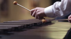Stock Video Footage of xylophone concert