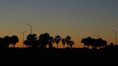Early morning in Florida with Palm Trees and traffic silhouetted Stock Footage