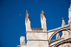 Cathedral towers and symbolic white bird Stock Photos