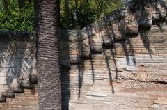 Zigzag masonry and palm tree - stock photo