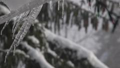 Icicles Dripping Stock Footage