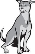 Husky Shar Pei Cross Dog Sitting Cartoon - stock illustration