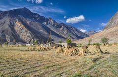 Crops in Tajikistan - stock photo