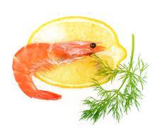 shrimp, a lemon, fennel - stock photo
