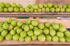 Bitter gourd or Chayote on wood in farms of agriculturist Stock Photos