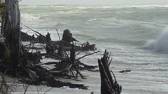 Waves crashing into stumps and driftwood on cloudy beach, Less sky, 4K Stock Footage