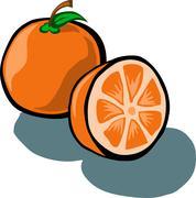 Orange and Slice - stock illustration