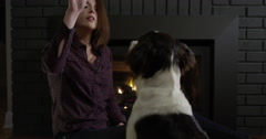 Attractive Woman Playing With Puppy in Front of Fire Place Stock Footage