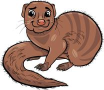 mongoose animal cartoon illustration - stock illustration