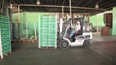 Latino with forklift organizing watermelons packages Stock Footage