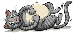 Stock Illustration of A fat gray cat