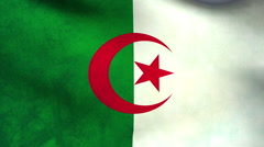 National flag of Algeria, grunge - stock footage