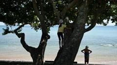 New Caledonia Noumea lagoon girl in tree 4k Stock Footage