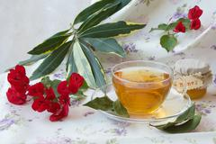 Herbal tea with bay leaf and honey - stock photo