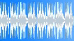 Skin Bling (Loop 03) Stock Music