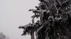 Snow falls on the trees and the ancient obelisk bottom view Stock Footage