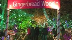 Christmas holidays - Canadians at Vandusen festival of light - stock footage