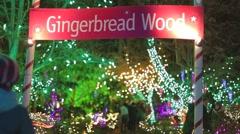 Bokeh - Canadians walking into gingerbread garden Vandusen Stock Footage